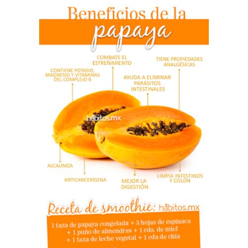 Enzimas de Papaya Good Natural