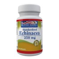 Echinacea 250 mg Estandarizado al 4% Fenólico