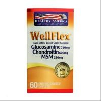 Well Flex Glucosamina Chondroitin Healthy America