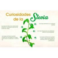 Hojas de Estevia 30g 50g 100g Alimentos Vida Sana