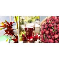 Flor de Jamaica x 100 g (Hibiscus Sabdariffa)